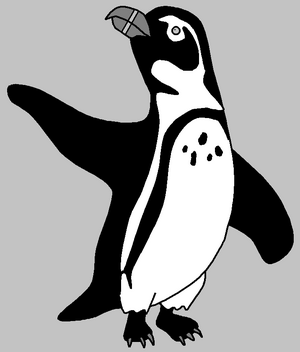 Dylan the African Penguin
