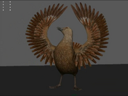Skua showing wings test (Happy Feet 2 Game)