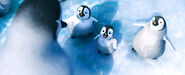2011 happy feet 2 026