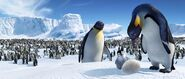 2006 happy feet 020
