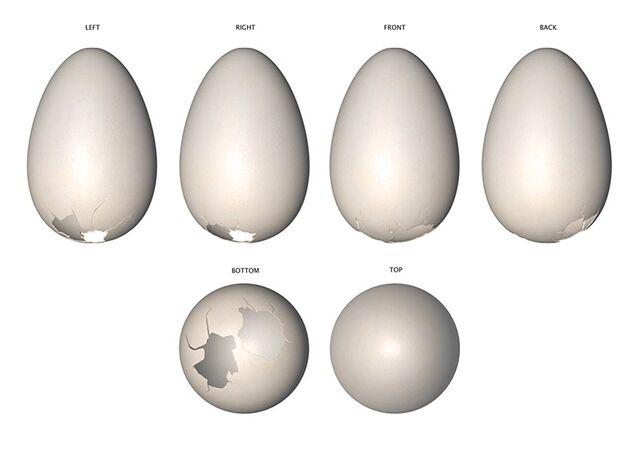 File:Mumble's Egg Concept Sheet.jpg