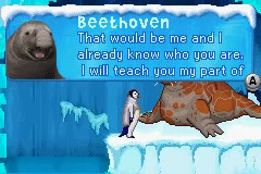 Beethoven the Elephant Seal