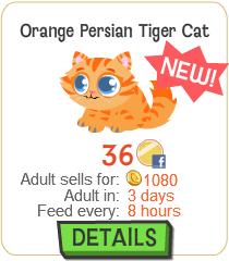 File:Orange Persian Tiger Cat New.png