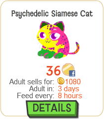File:Psychedelic Siamese Cat New.png