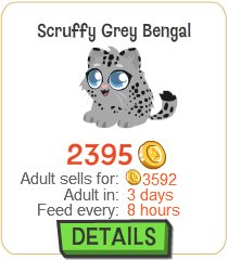 File:Scruffy Grey Bengal New.png