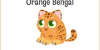 Orange Bengal