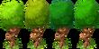 Decoration Bent Tree Colors
