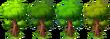 Decoration Oak Tree Colors