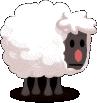 Mountain Special Sheep