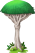 Cover Tree (seaside)