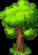 Oak Tree (seaside)