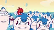 Flaky evading sharks