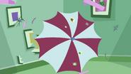 STV1E13.3 Umbrella shield