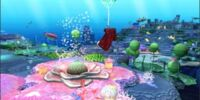 Coral (Map)