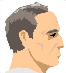File:Steve head2.PNG