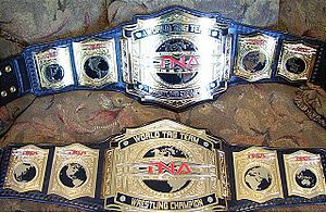 File:300px-TNA tag team championships.jpg