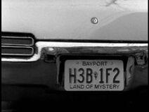 Bayport plate 1995