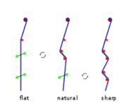 Pedal-string