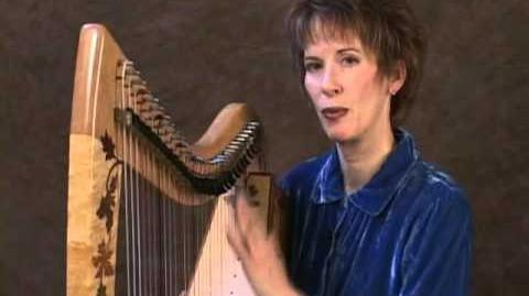 Complete Introduction to the Double Strung Harp