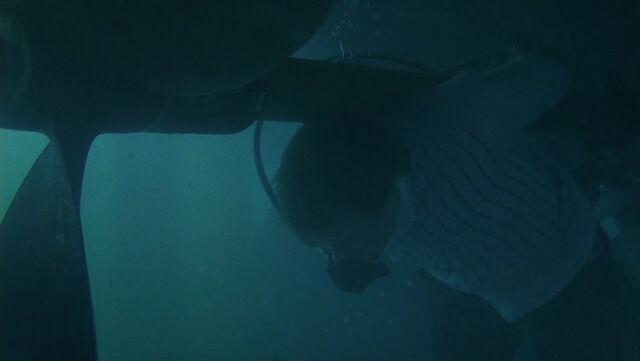 File:1x01 - Ben's Death.jpg