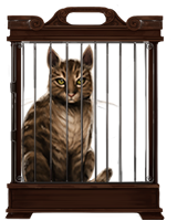 File:Tabby-cat-lrg.png
