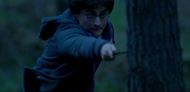 File:Harry Potter fighting back.jpg