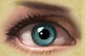 File:Bluegreeneye.PNG
