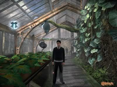 File:Greenhouse .jpg