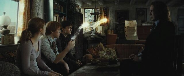 File:Ron and the Deluminator.jpg