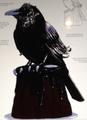 RavenclawCake.png