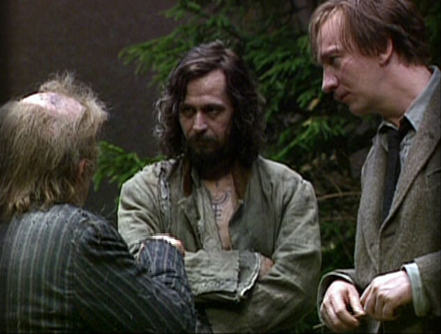 File:Wormtail, Padfoot and Moony.jpg