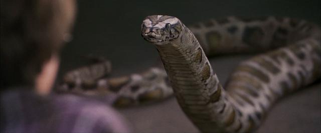 File:Harry-Snake-PSF.png