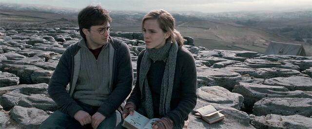 File:Harry-potter-deathly-harry hermione.jpg