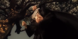 Severus Snape Being Bullied By James Potter