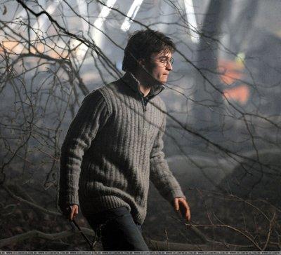 File:Harry In Forest.jpg