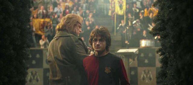 File:Harry enters the Third Task maze.jpg