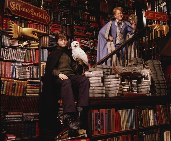 File:HarryandLockhartatFlourishandBlotts.jpg