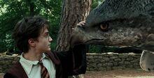 Harry Potter Buckbeak.jpg