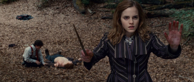File:Hermione with bloody hands (and a splinched Ron lying on ground).jpg