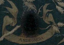 Andromeda Black Family Tree