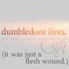 Dumbledorefleshwound.jpg