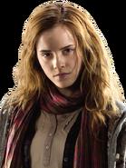 Hermione Granger HS TDH