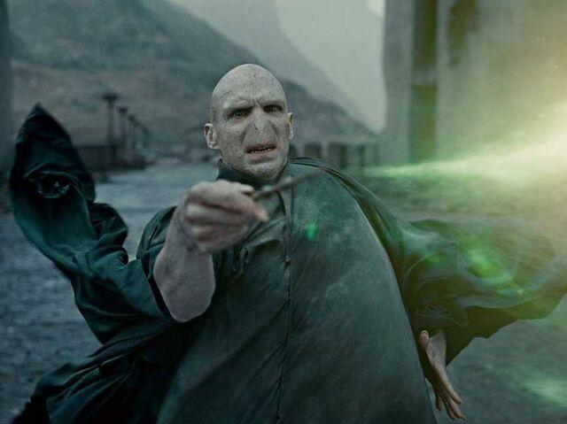 Fitxer:Harry vs voldmort.jpg