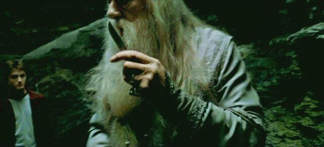 File:Prof. Dumbledore release his knife.JPG