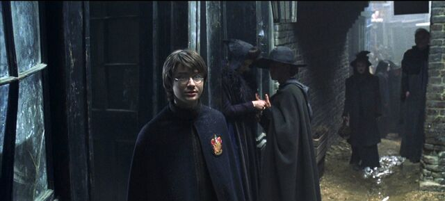 File:Harry-potter2-movie-screencaps.com-2273.jpg