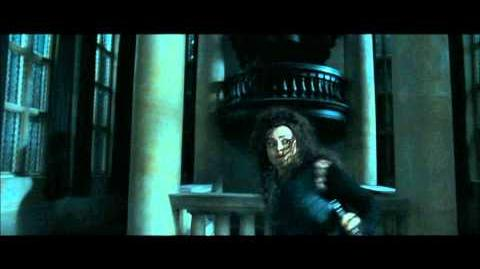 Harry Potter and the Deathly Hallows part 1 - Bellatrix's reign of terror at Malfoy Manor (part 1)