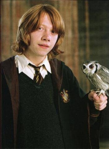 Файл:Ron-and-his-owl.jpg