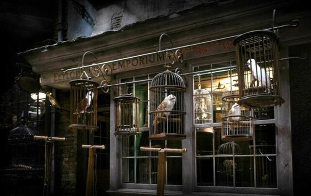 File:Diagon Alley - Eeylops Owl Emporium.jpg
