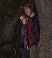 Ronyhermione.jpg