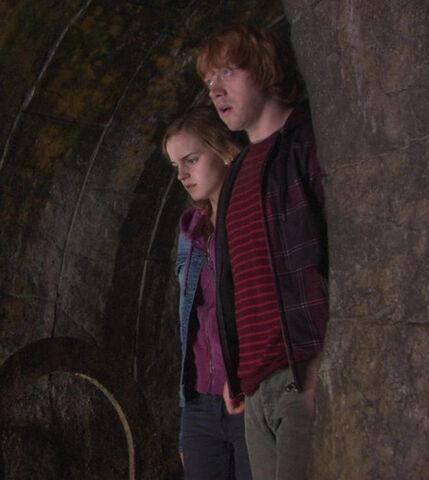 File:Ronyhermione.jpg